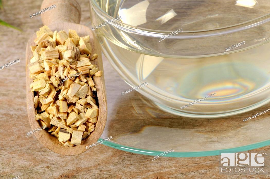 Stock Photo: Cup of tea with stems of (Clematis) armandii (Caulis Clematidis Armandii), Mu Tong, Mutong Caulis.