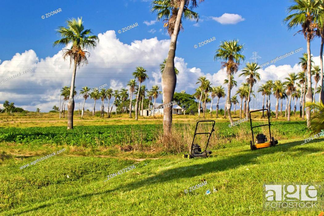 Stock Photo: Picnic area between Havana and Pinar del Rio.