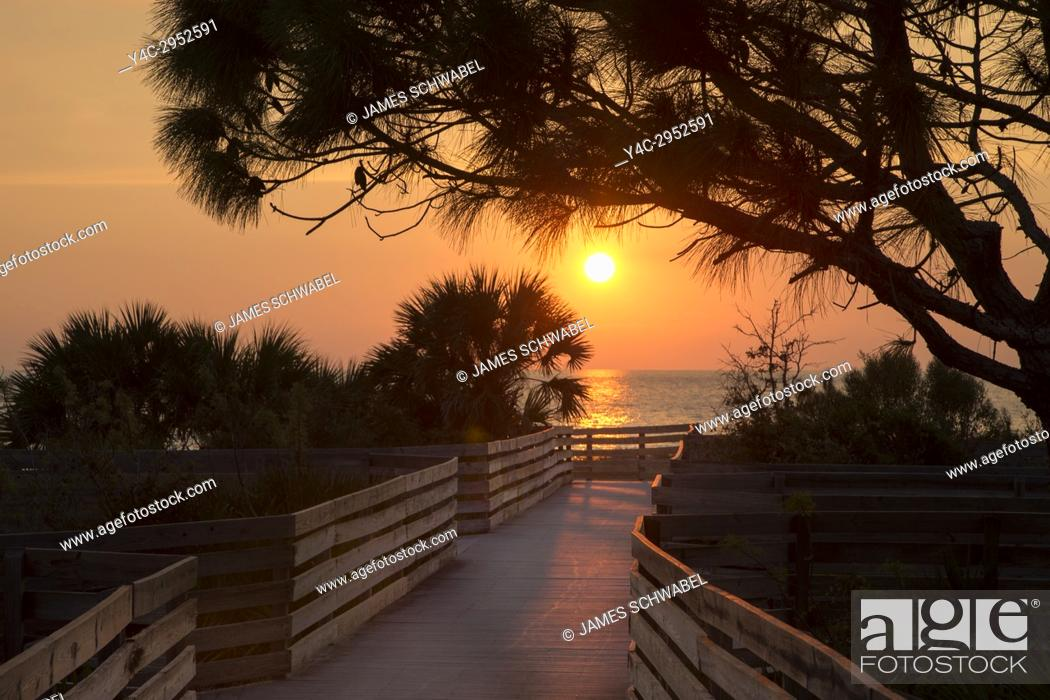 Imagen: Sunset over walkway to beach on Gulf of Mexico in Venice Florida.