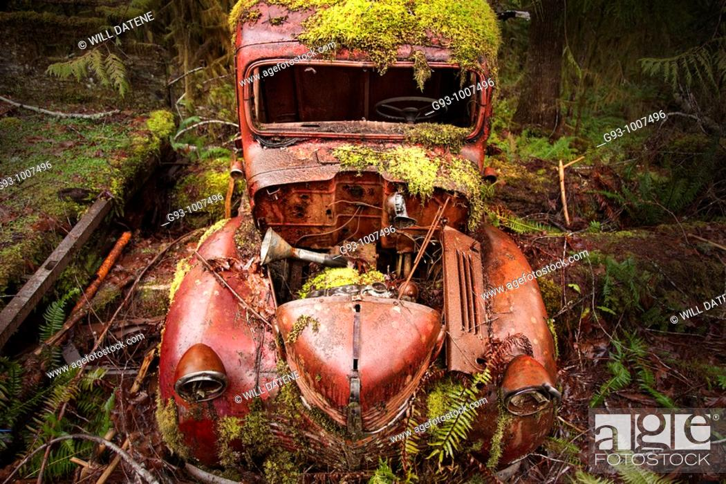 Stock Photo: Old truck covered with moss.