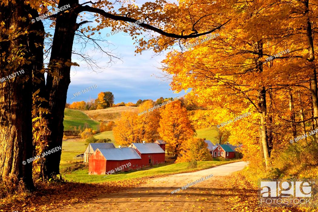 Stock Photo: Autumn morning at the Jenne Farm near South Woodstock, Vermont, USA.