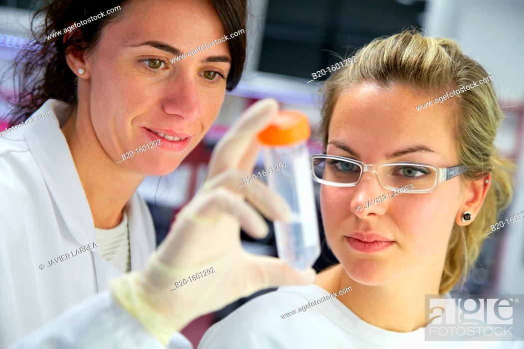 Stock Photo: Hood biological  BioMEMS laboratory  Research of surface chemistry and biological interactions for BioMEMS bio functionalization  Microelectronics and.