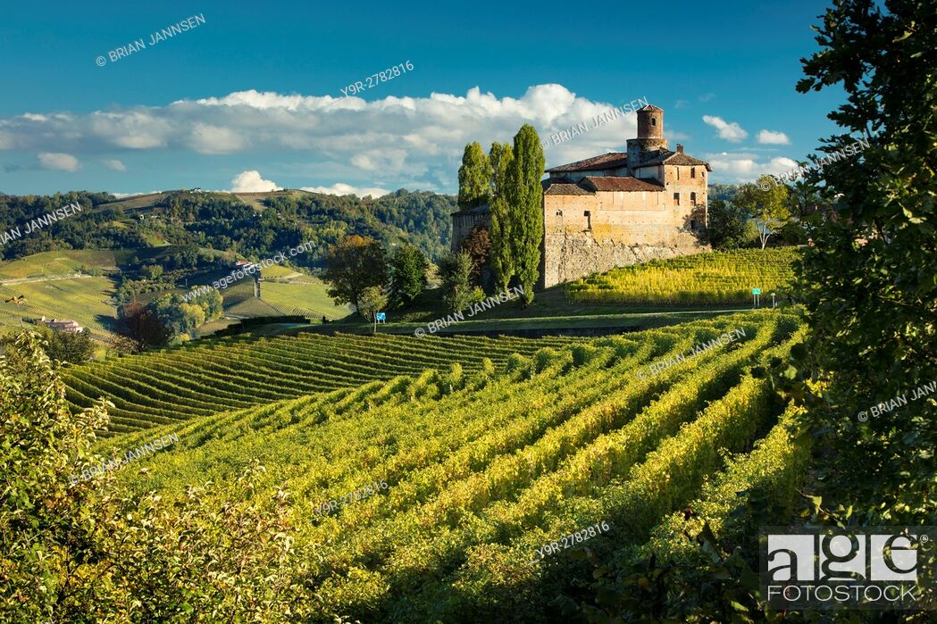 Stock Photo: Autumn evening sunlight on Castello della Volta and vineyards near Barolo, Piemonte, Italy.