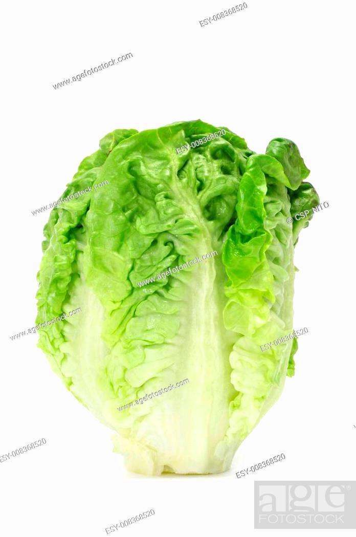 Stock Photo: lettuce heart.