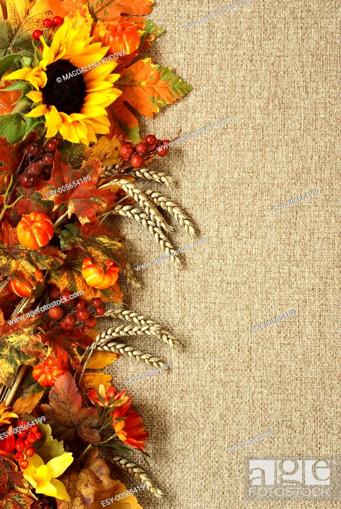 Photo de stock: Sunflower, autumn leaves and fruits on burlap background.