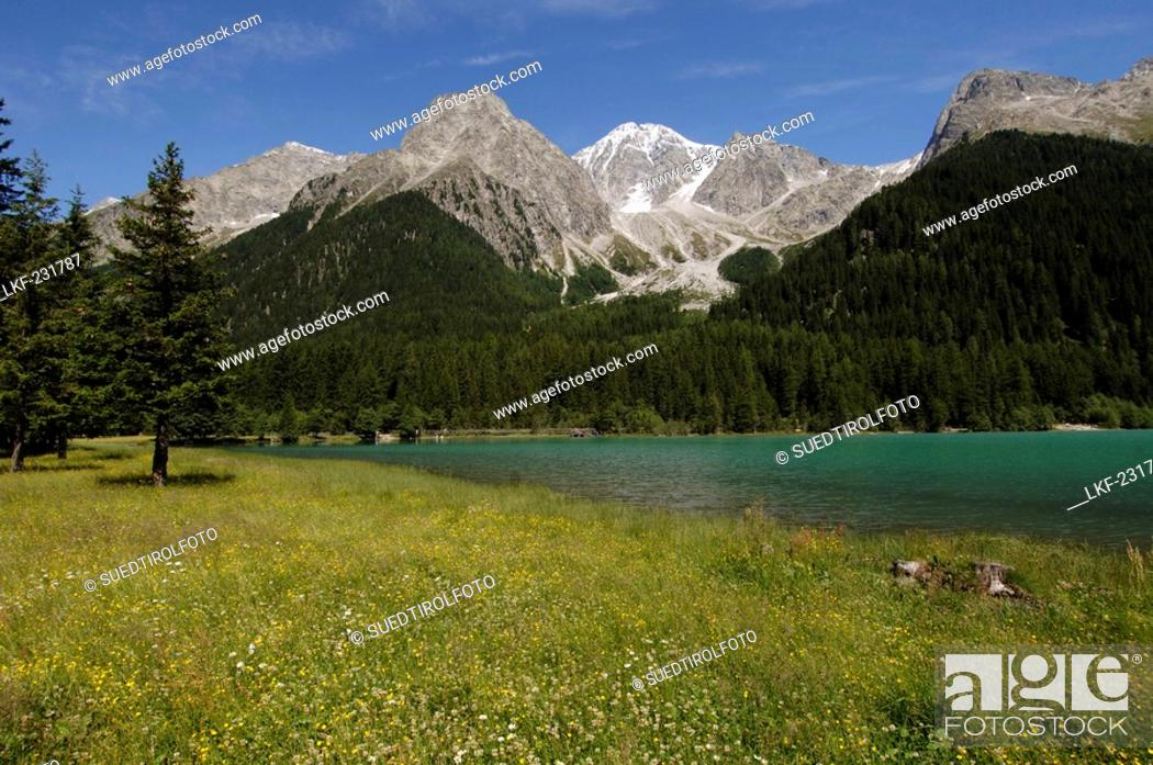 Stock Photo: The Antholzer lake in idyllic mountain scenery in the sunlight, Val Pusteria, South Tyrol, Italy, Europe.