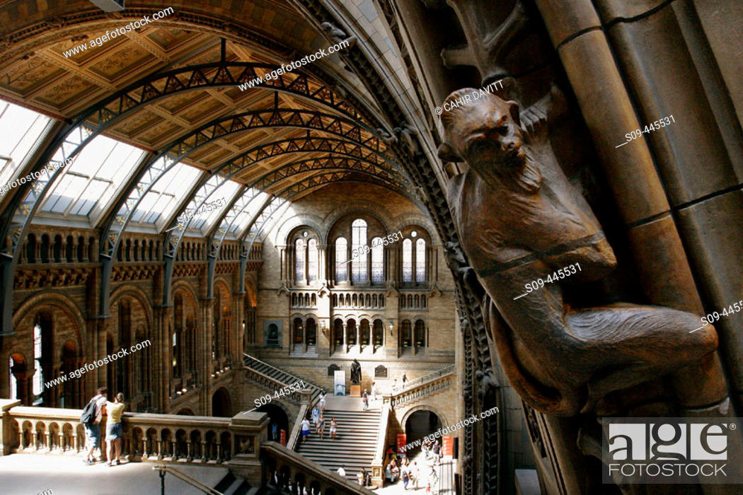 Stock Photo: Great entrance hall of the Natural History Museum in Kensington, London. England, UK.