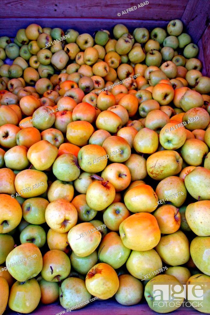 Stock Photo: apple, fruit, food.