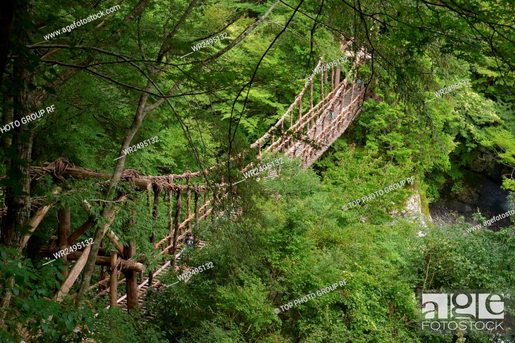 Imagen: Aouzou surrounding valley, spot, Aouzou Double Vine bridge, Tokushima County, Miyoshi City, Japan.
