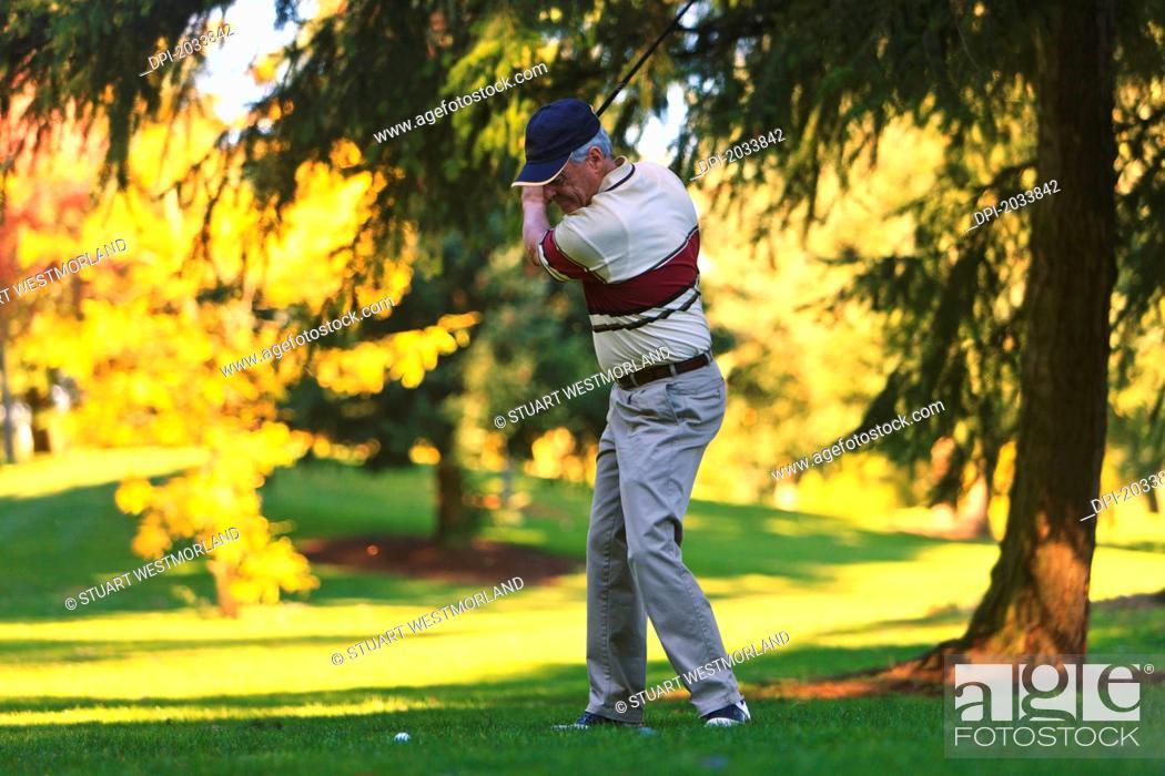 Stock Photo: A Man Golfing At Lynnwood Golf Course, Lynnwood Washington United States Of America.