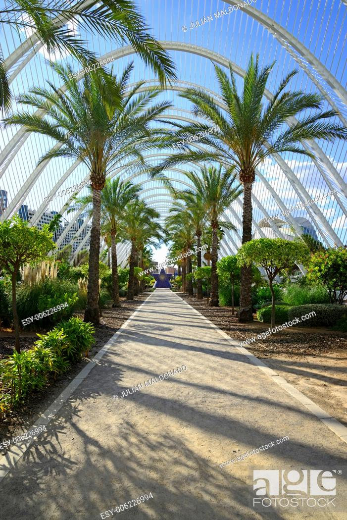 Stock Photo: Space Umbracle gardens. City of Arts and Sciences in Valencia, Spain.