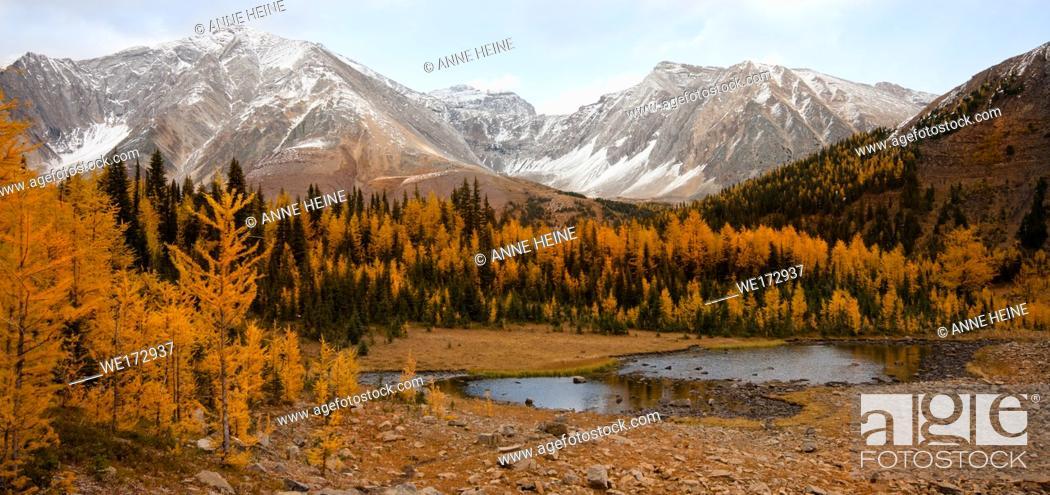 Stock Photo: Mountain landscape. Alberta. Canada.