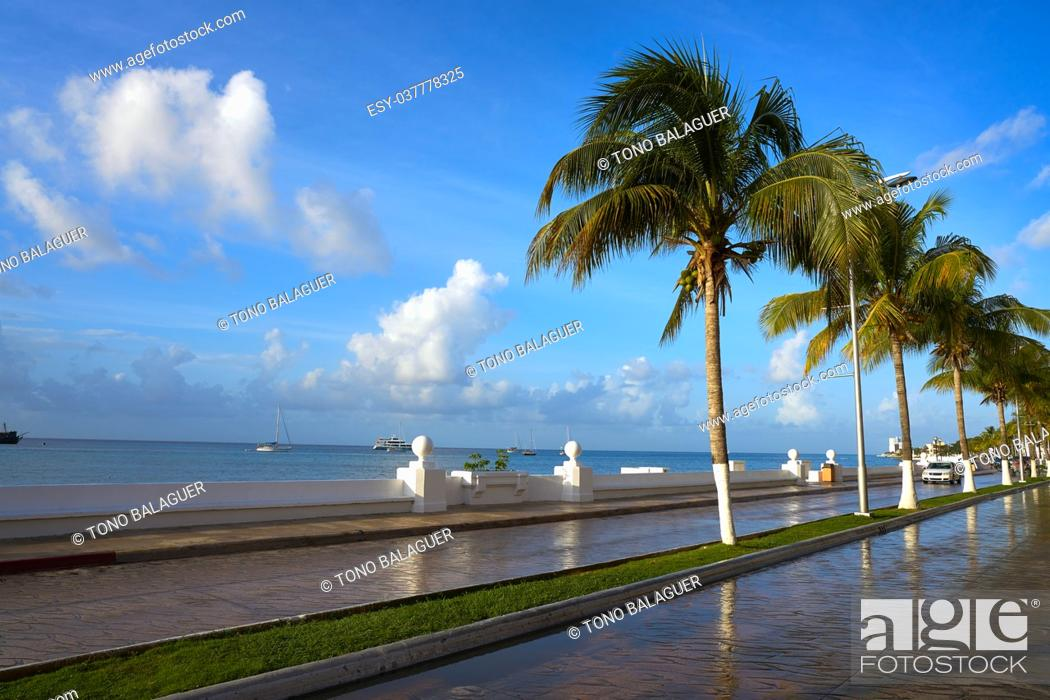 Stock Photo: Cozumel palm trees promenade and Caribbean in Riviera Maya of Mexico.