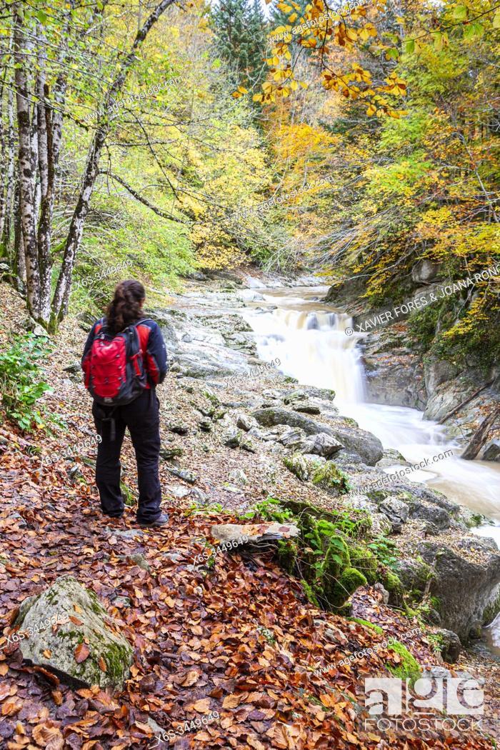 Imagen: Del Cubo waterfall in Selva de Irati forest near Lodosa, Navarra, Spain.