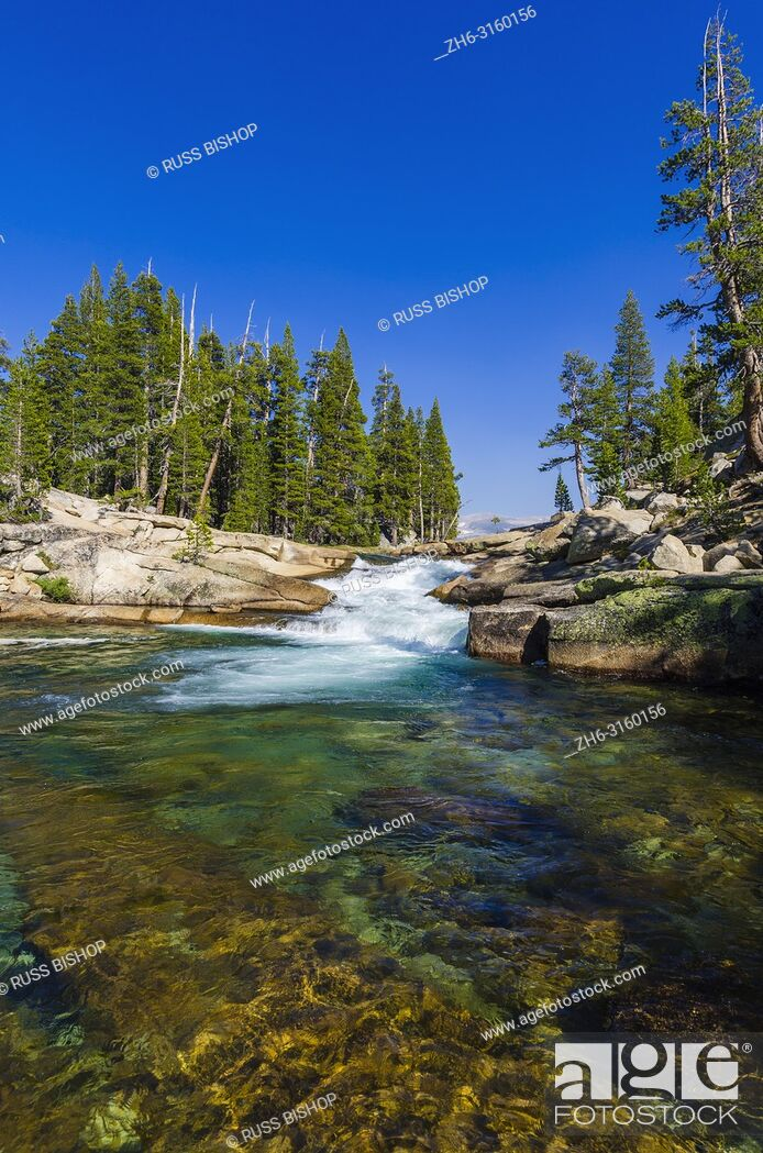 Photo de stock: Cascade on the Tuolumne River, Tuolumne Meadows, Yosemite National Park, California USA.