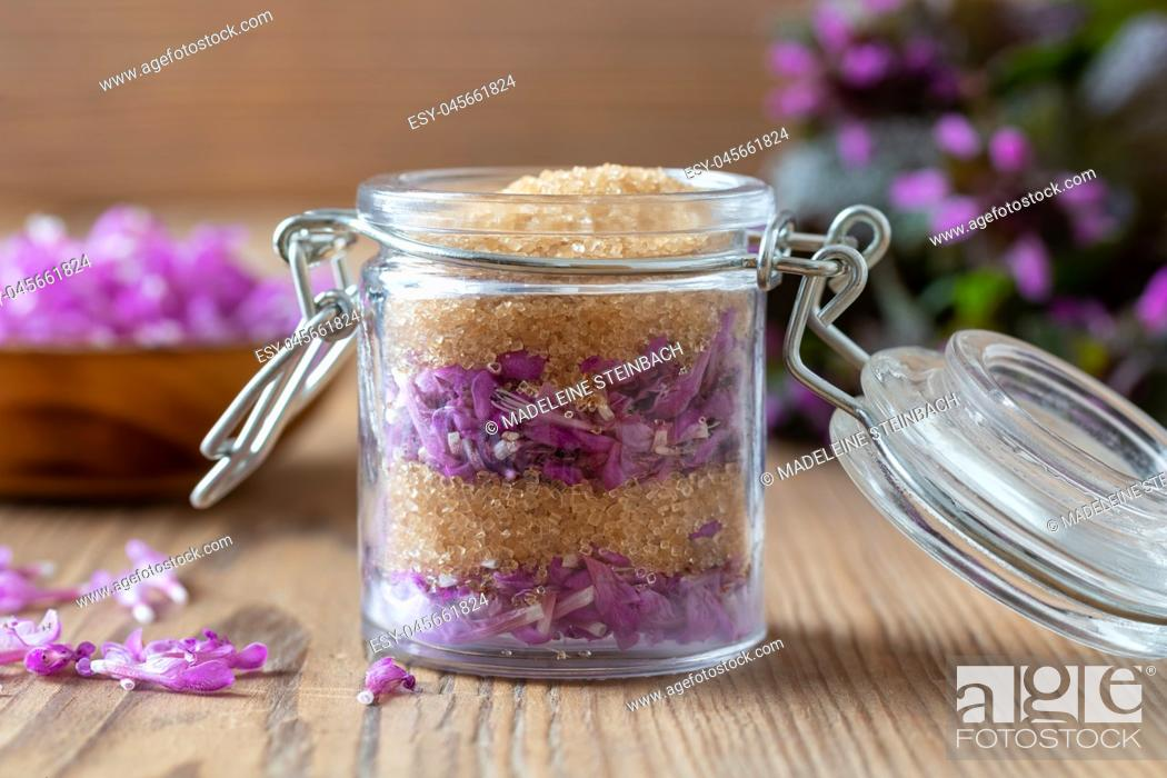 Stock Photo: Preparation of homemade herbal syrup from fresh purple dead-nettle flowers and cane sugar.