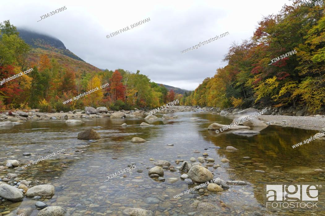 Stock Photo: Autumn foliage along the East Branch of the Pemigewasset River in Lincoln, New Hampshire on a cloudy autumn day. This location is near where Clear Brook drains.