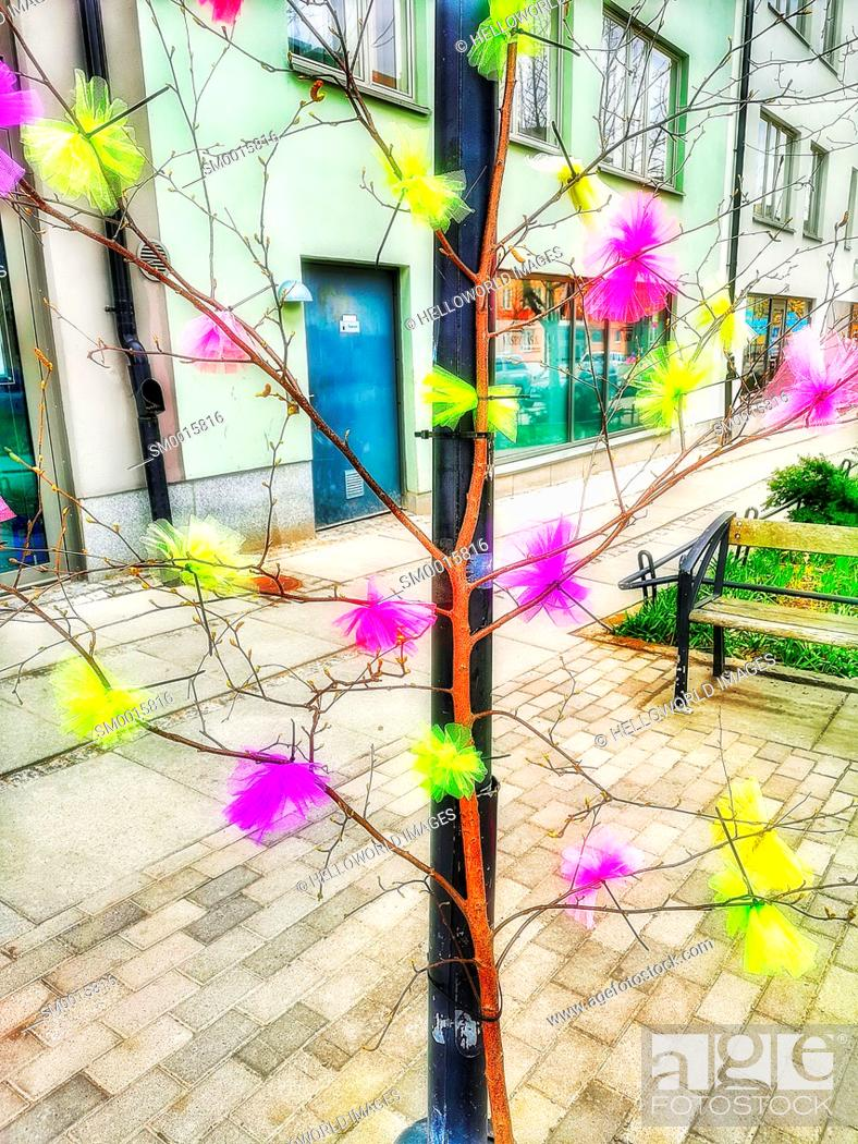 Stock Photo: Colourful Easter artificial feathers attached to birch branch, Stockholm, Sweden, Scandinavia. An old Swedish Easter tradition.