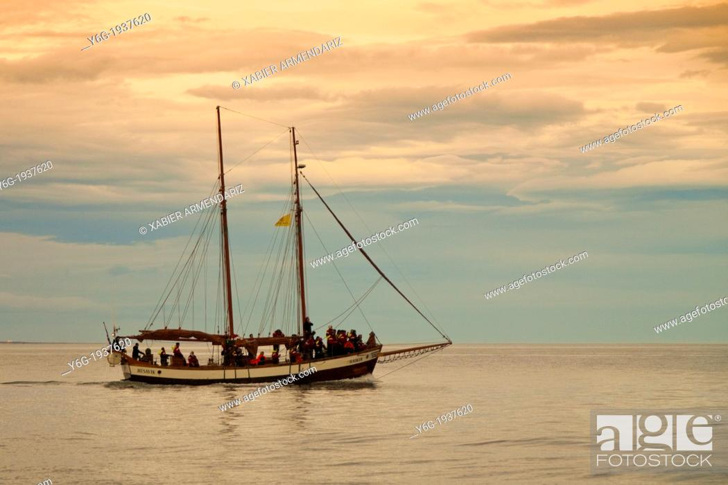 Stock Photo: Old whaler tall ship converted for tourist whale watching. Husav.