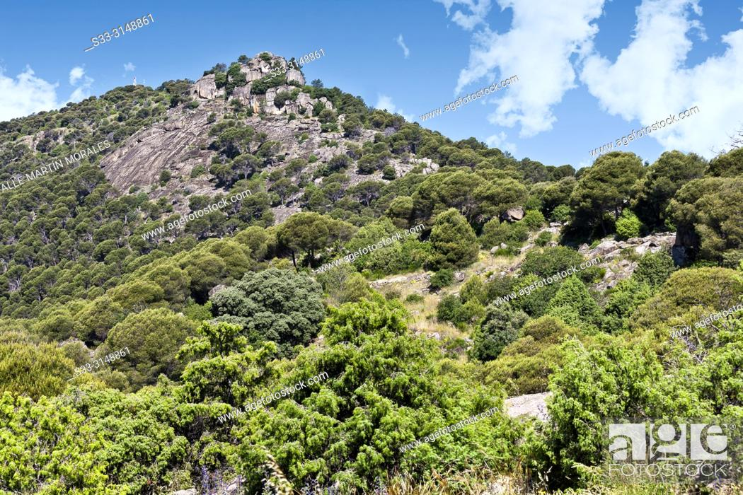 Stock Photo: Castrejon hill in Cebreros. Avila. Spain.