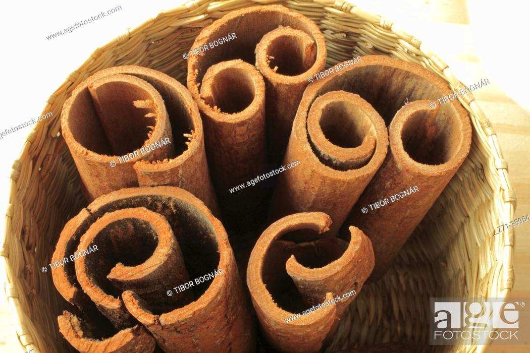 Stock Photo: Cinnamon, .