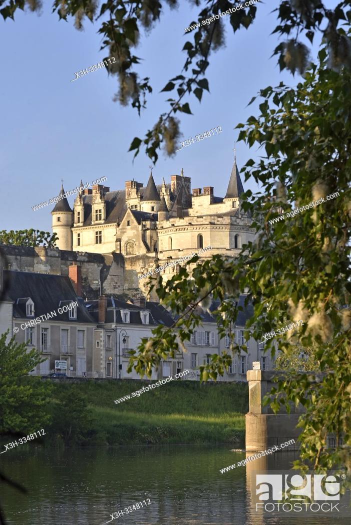 Stock Photo: Chateau d'Amboise on the Loire River at Amboise, Touraine, department of Indre-et-Loire, Centre-Val de Loire region, France, Europe.