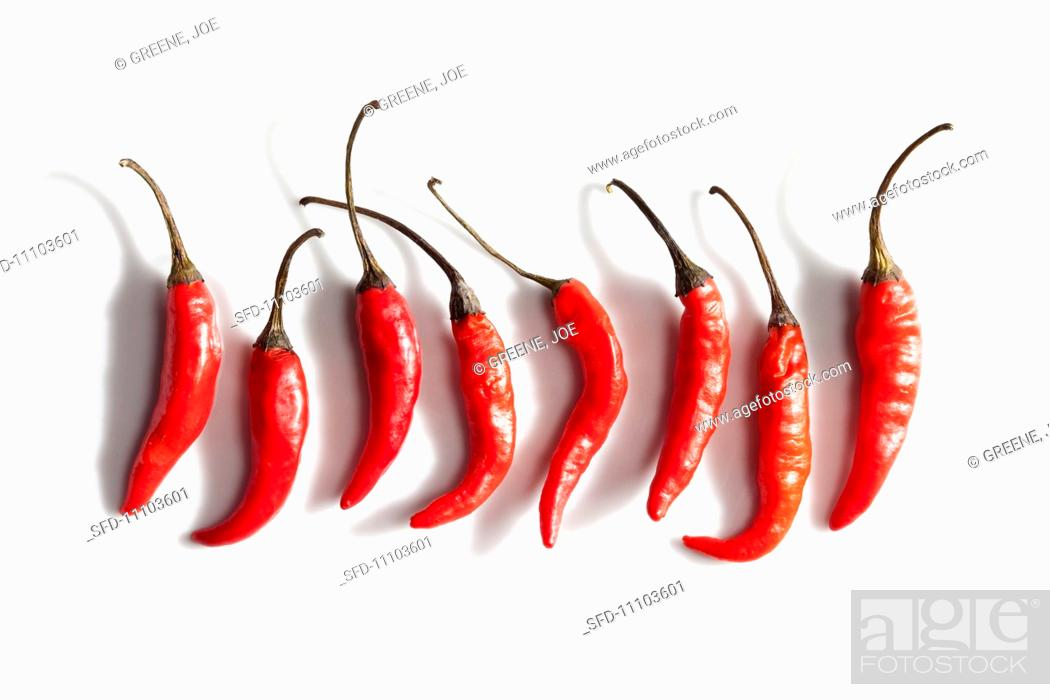 Stock Photo: Eight Red Chili Peppers on a White Background.
