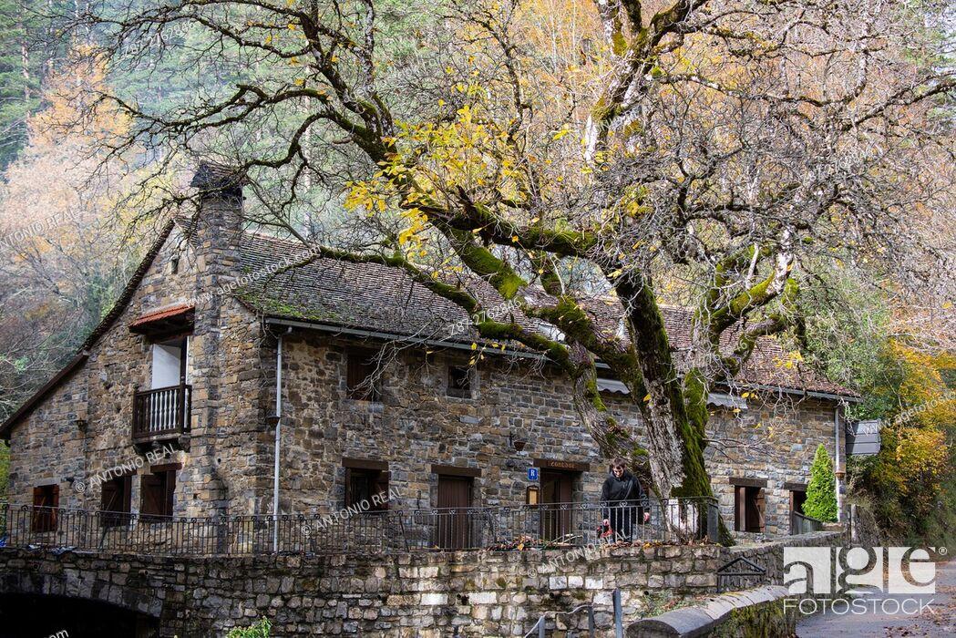 Imagen: Recreation area, Valle de Ansó, Valles Occidentales Natural Park, Pyrenees Mountains, Huesca province, Aragon, Spain.