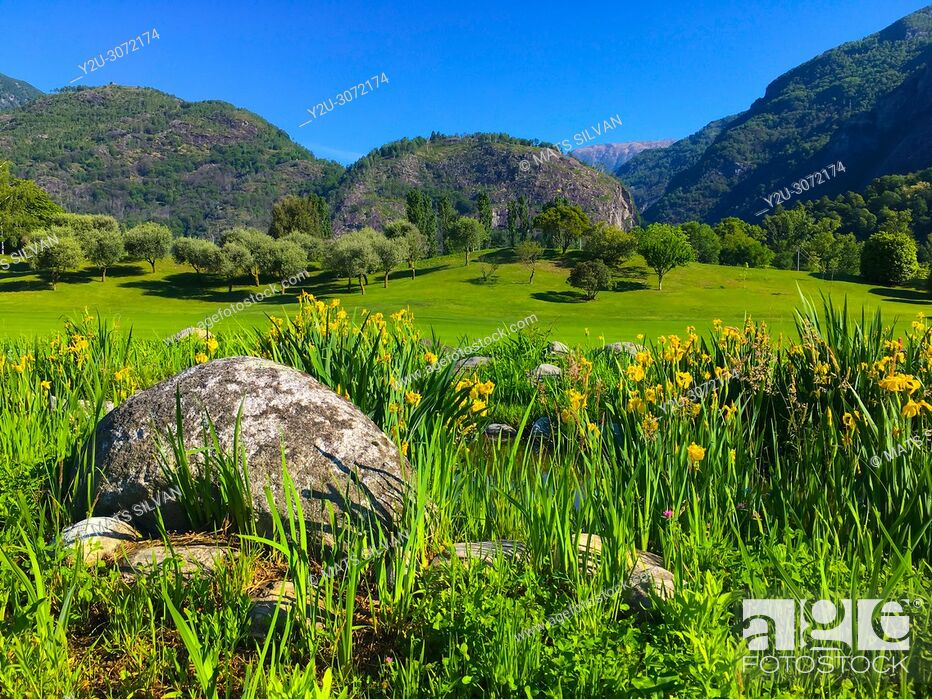 Stock Photo: Golf Course Gerre Losone with Flowers and Stone and River and Mountain in Losone, Ticino, Switzerland.