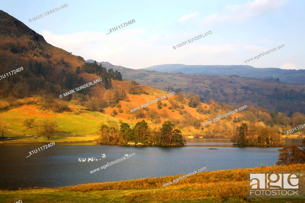 Stock Photo: Rydal Water and Heron Island Cumbria England.