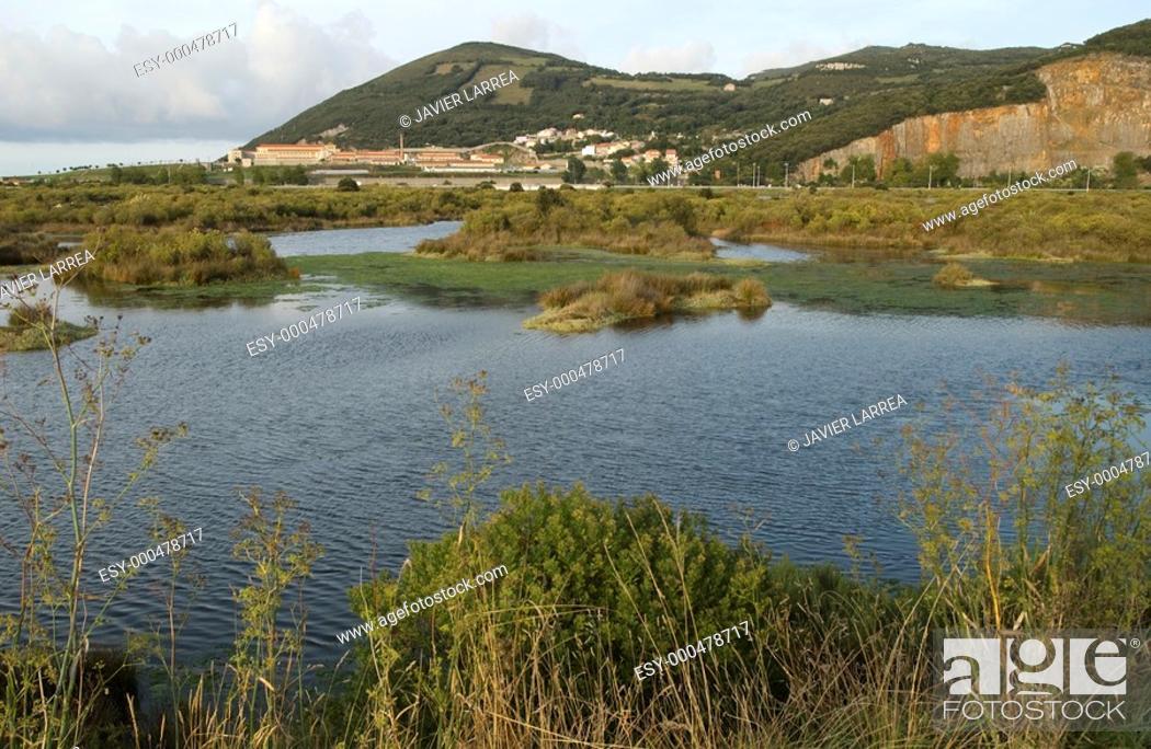 Stock Photo: Reserva Natural de las Marismas de Santoña. Cantabria. Spain.