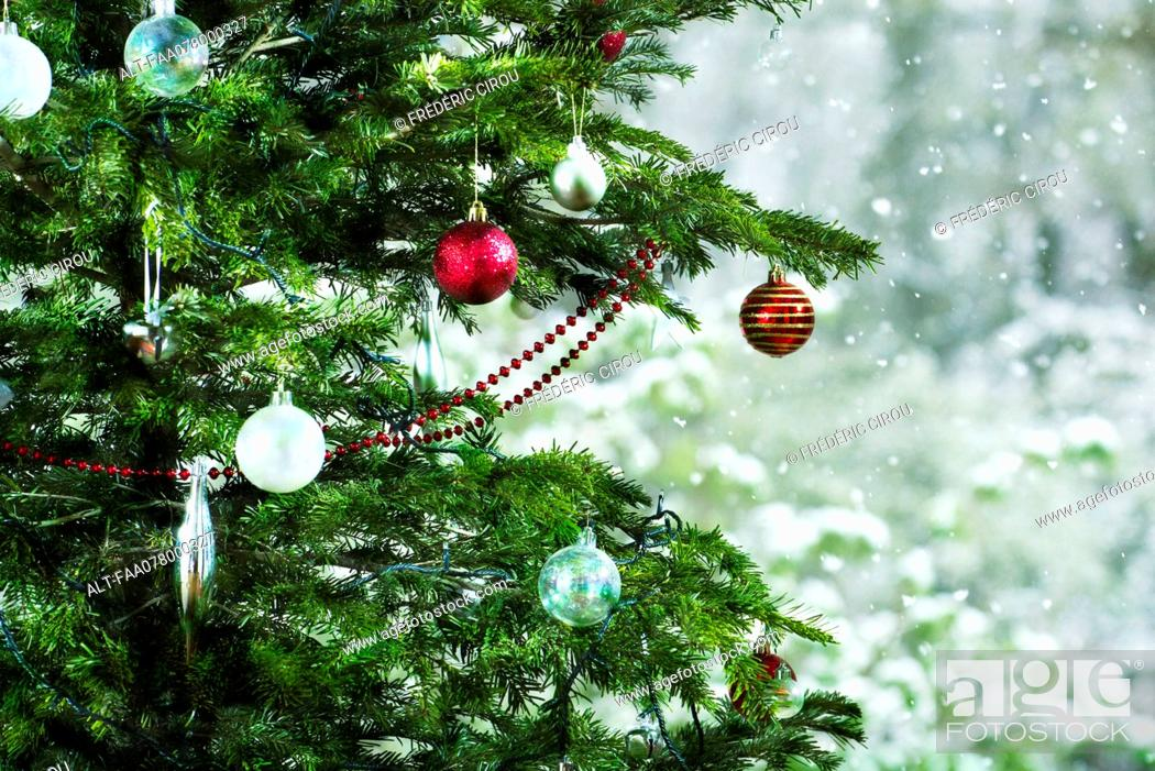 Imagen: Christmas tree, close-up.