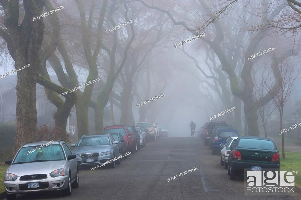 Stock Photo: Foggy morning. East 6th ave, Vancouver, B.C. Canada.