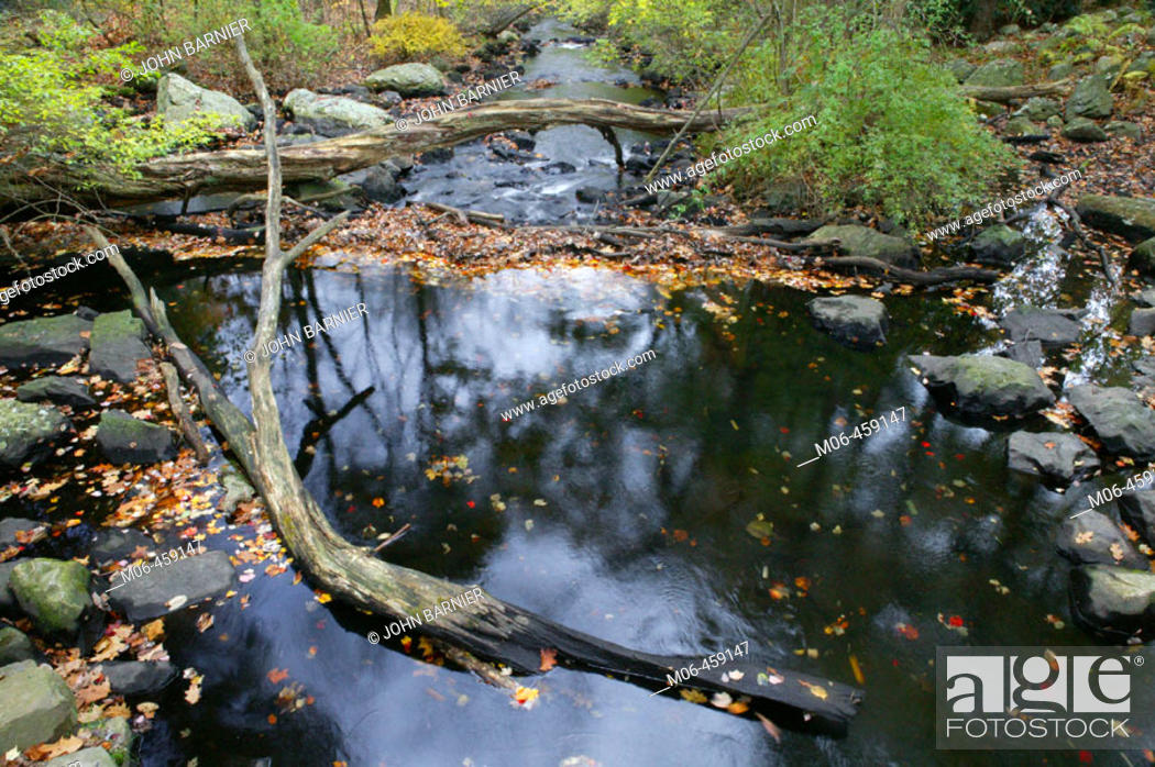 Stock Photo: Cat Rock Park, Weston, Massachusetts. USA.