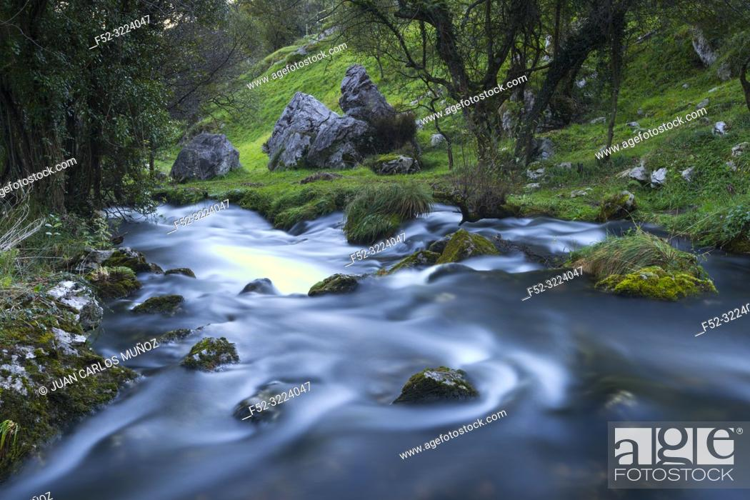 Stock Photo: Birth of the Gándara River, La Gándara, Soba Valley, Valles Pasiegos, Cantabria, Spain, Europe.
