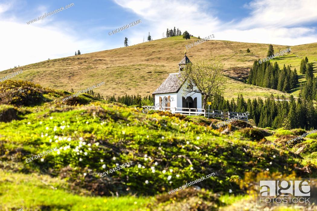 Imagen: Austrian Alps near Postalm, Upper Austria, Austria.