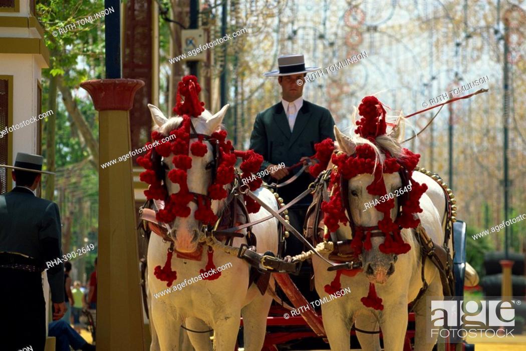 Stock Photo: Horse-drawn carriage, Feria del Caballo Horse Fair, Jerez de la Frontera, Cadiz area, Andalucia Andalusia, Spain, Europe.