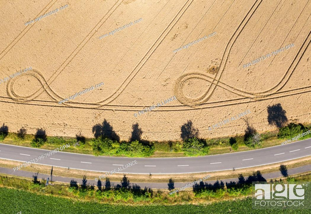 Stock Photo: 13 July 2020, Saxony, Espenhain: A farmer has left tracks in a cornfield with his vehicles. (aerial view with drone) Photo: Jan Woitas/dpa-Zentralbild/dpa.
