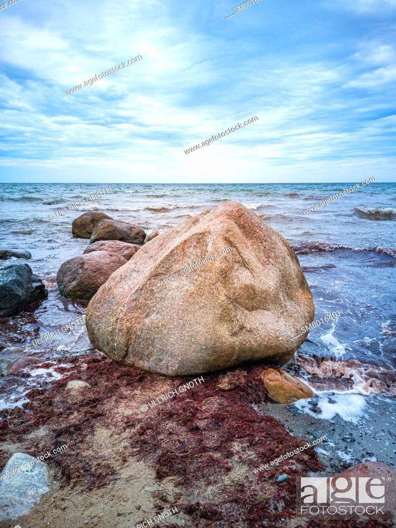 Stock Photo: Kelp and rocks at the shores of Moens Klint, Denmark, Europe.