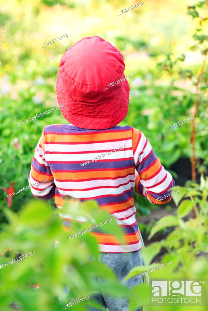 Stock Photo: Tranquil summer scene. Young girl standing in garden, watching plants and flowers.