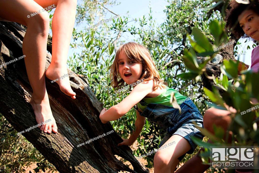 Stock Photo: Girls climbing tree.