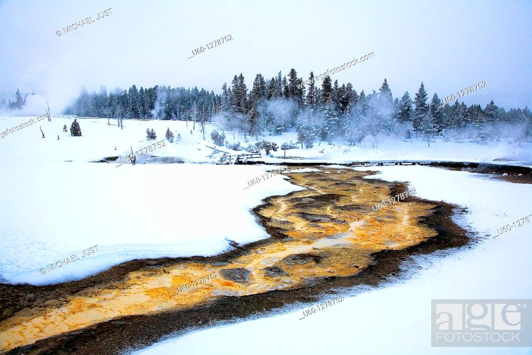 Stock Photo: Runoff from the Sawmill Geyser produces brilliant colors from bacteria, microorganisms during the winter at Yellowstone National Park, Wyoming.