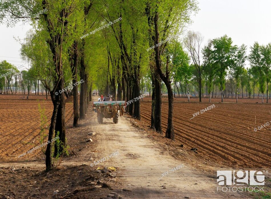 Stock Photo: Chinese farming. Seed drill Spring planting in the rich farm field soils on the south edge of Taiyuan city, Shanxi province, China.
