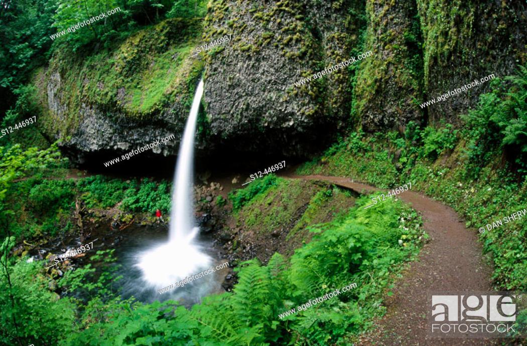 Stock Photo: Upper Horsetail Falls. Columbia River Gorge. Oregon. USA.