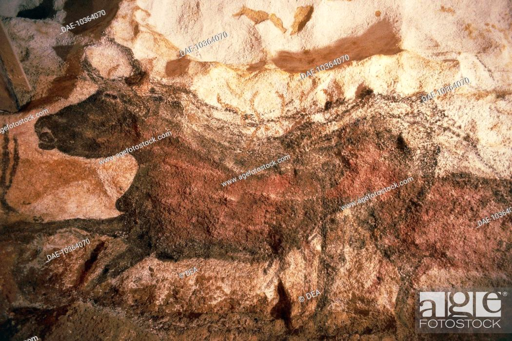Stock Photo: France - Lascaux caves in the valley of Vézère (World Heritage Site by UNESCO, 1979) - Rock paintings dating from the Palaeolithic period.