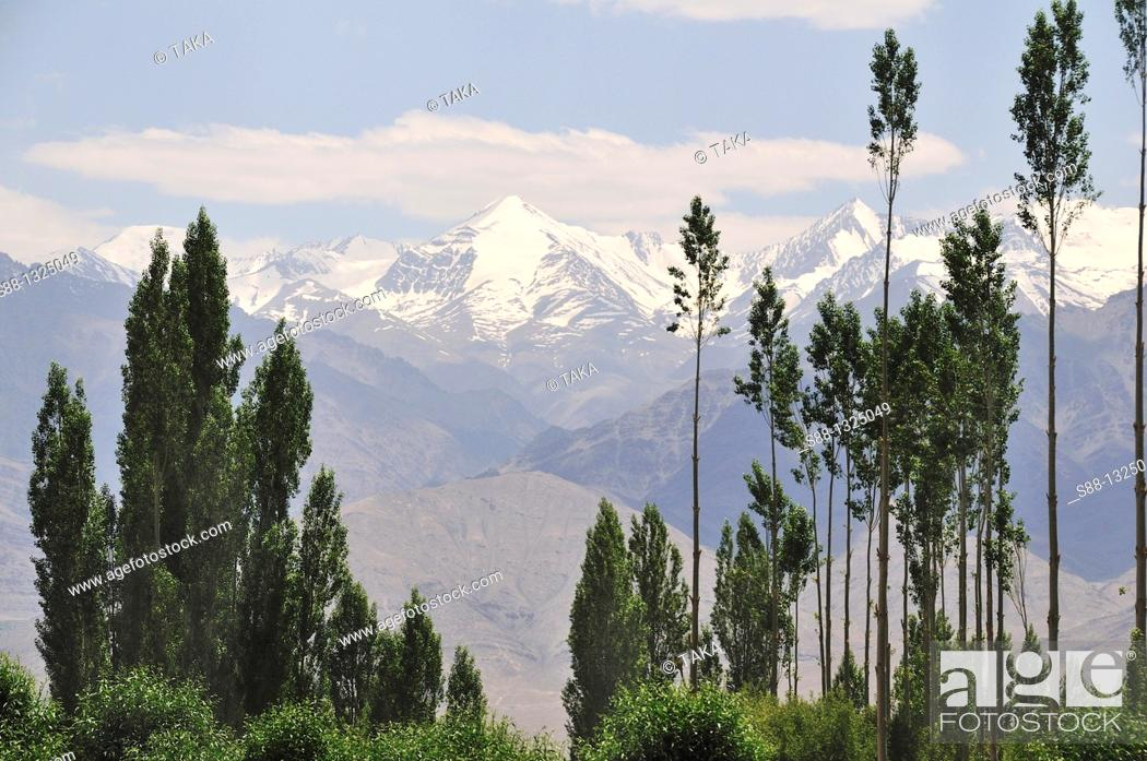 Stock Photo: Mountain view in Leh. Ladakh, Jammu and Kashmir, India.