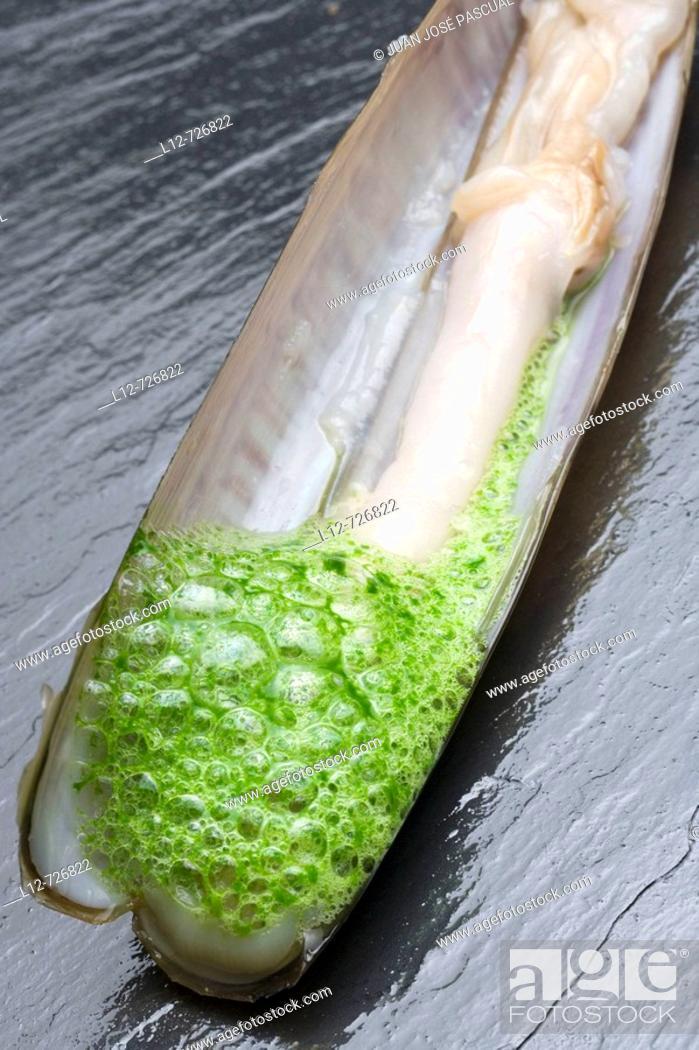 Stock Photo: Razor shell with parsley and garlic foam at restaurant El Mercadito by Gonzalo Rey, Santiago de Compostela. La Coruña province, Galicia, Spain.