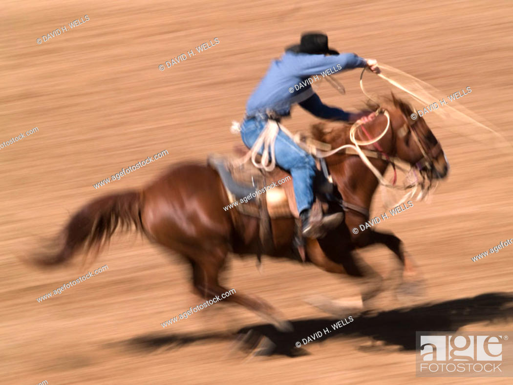 Stock Photo: Horses and riders in rodeo event.