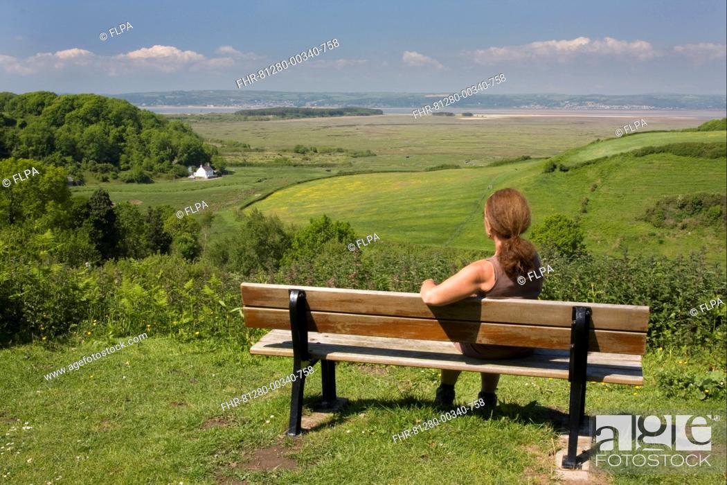 Stock Photo: Woman sitting on bench overlooking coastline, Llanmadoc, Llanridian Sands, Burry Port, Gower Peninsula, Glamorgan, Wales, june.