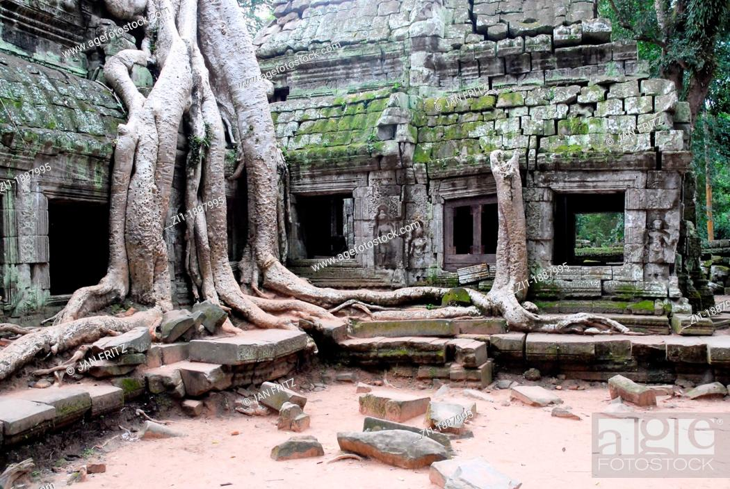 Wat Is Kapok.Detail Of Remains Of Temple With Kapok Tree At Ta Prohm